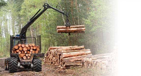Części domaszyn leśnych